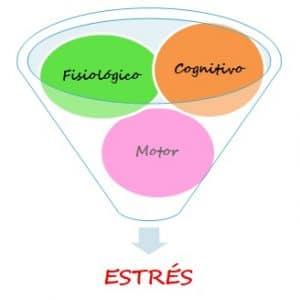 componentes del estrés