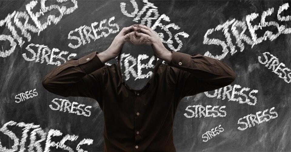 Fases del estrés