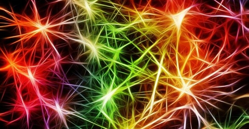 Dopamina y estrés