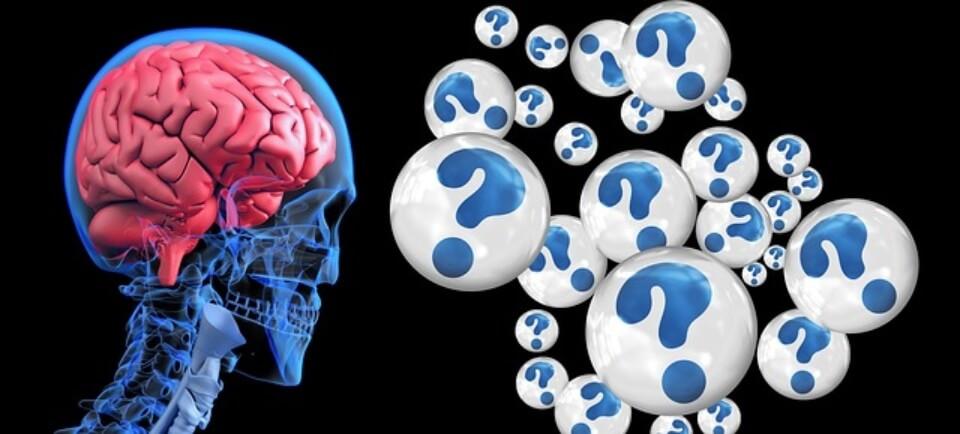 como se calcula el coeficiente intelectual